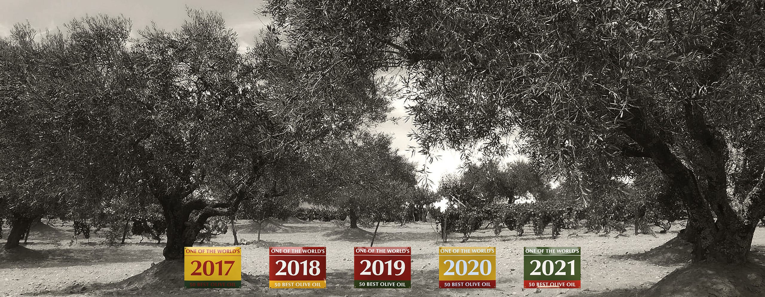 Vale Douro World's best olive oil
